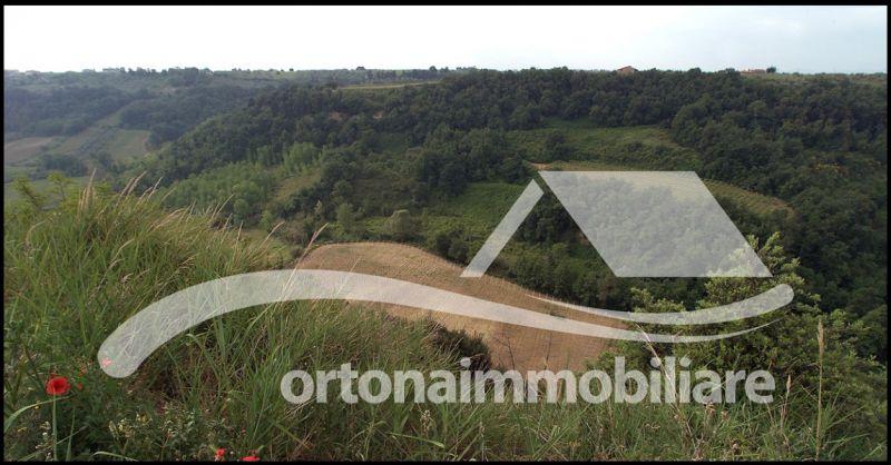 Ortonaimmobiliare - Occasione vendita azienda agricola terreno casolare ad Ortona Chieti Italy
